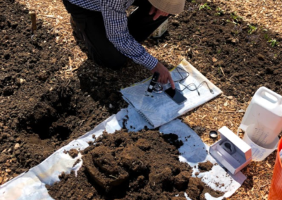 Image of Soil samples being assessed at Crackstone